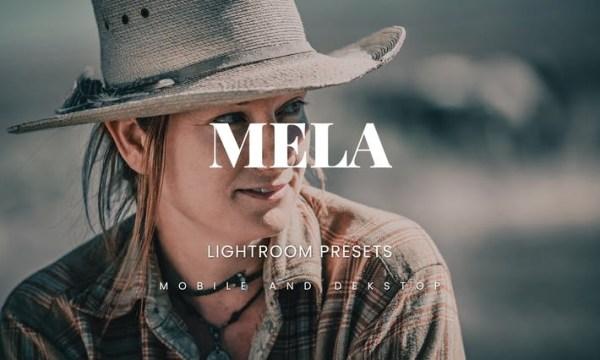 Mela Lightroom Presets Dekstop and Mobile