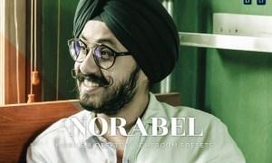 Norabel Mobile and Desktop Lightroom Presets
