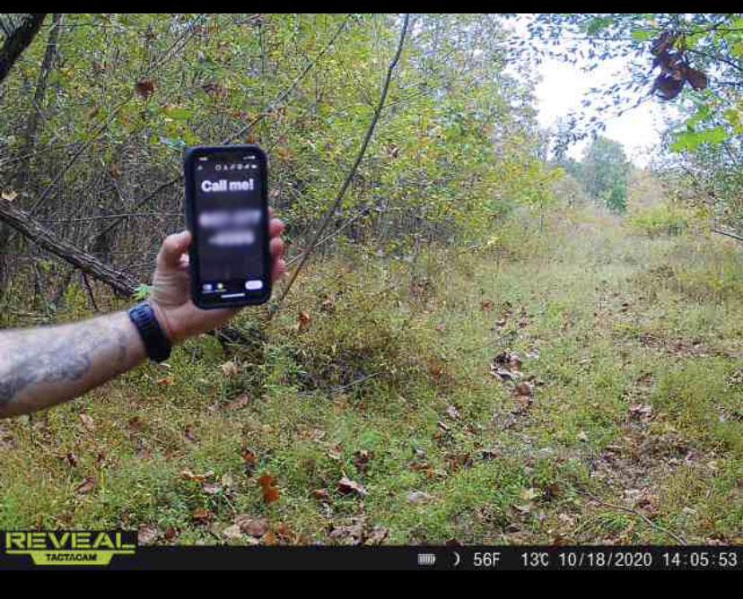 hunting, trespassing, trespassers, free range american