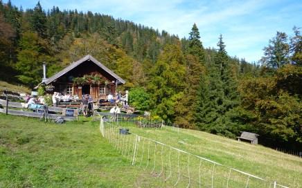 Hochalm Trailrunde Sylvenstein