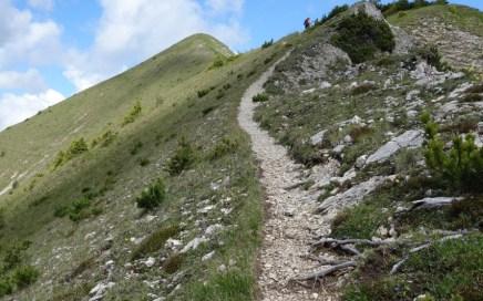 Kienjoch Trail