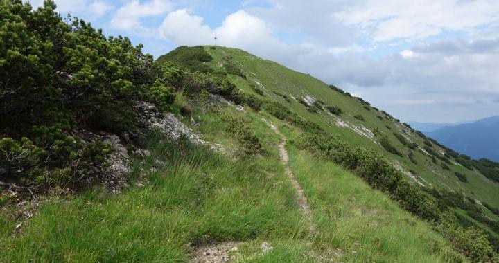 Kuhalm-Trail, kleiner Trail ganz groß