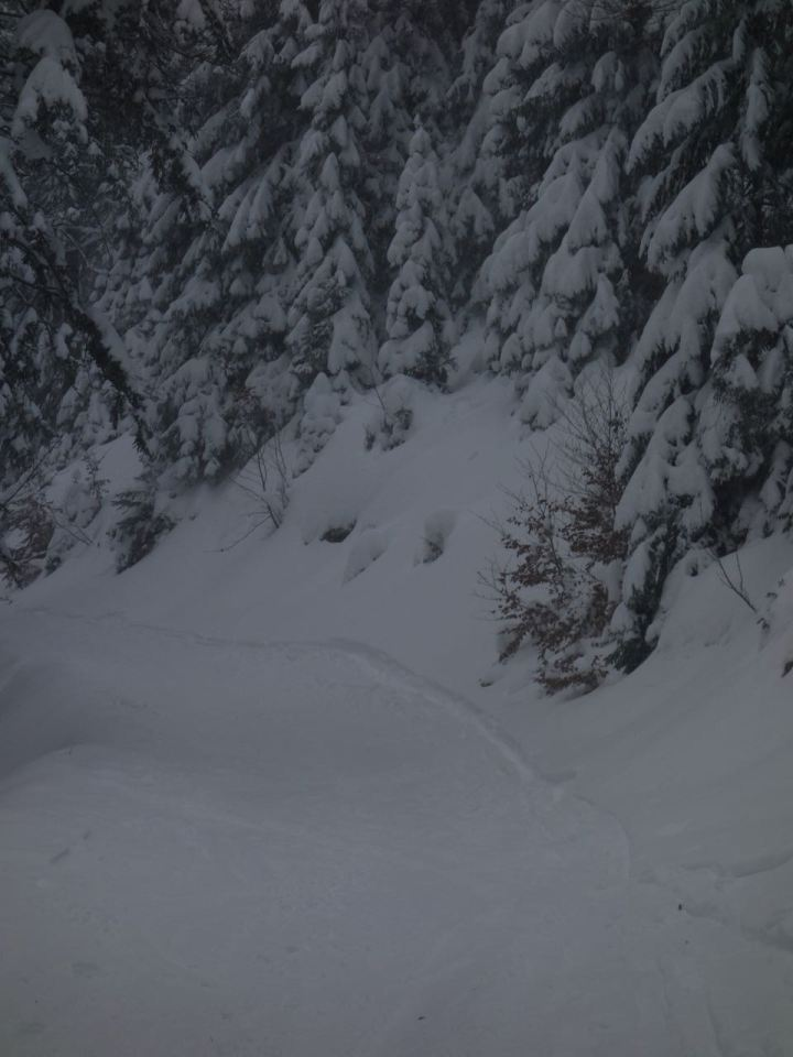 Tief verschneiter Bergwald, fluffiger Pulver auf der Narur-Piste...