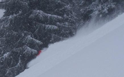 ...und biegt Skiersleft in eine der zahlreichen Waldschneisen...