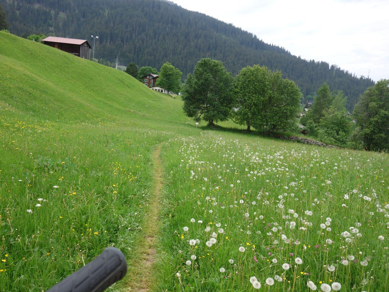 Grasgrün ist der Trail in Klosters