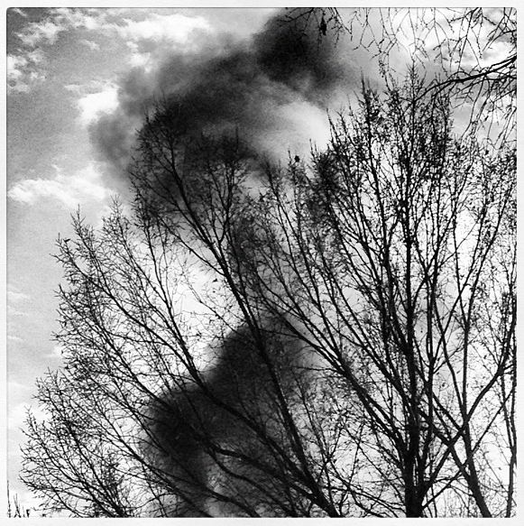 Black and white image of cloud-like black smoke in tree branches with sky behind.