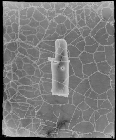 X-ray: Dagger-axe, China, bronze with iron ore, F1934.11