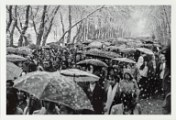 Black and white image of a crowd walking with umbrellas up.