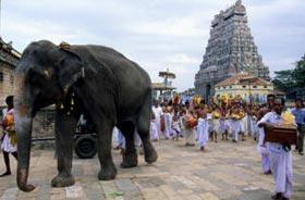 An elephant leads a temple procession while priests and musicians follow behind.