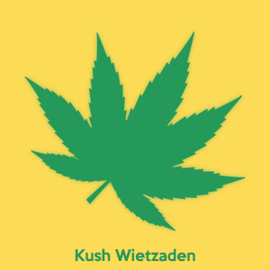 Buy Kush cannabis seeds