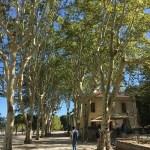 ボルドーから南仏へ 8 ローマの遺跡とゴッホ
