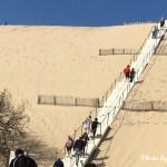 絶景のピラ砂丘