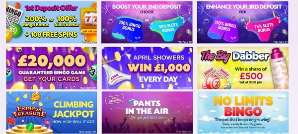 Lucky Pants Bingo welcome bonus and free spins
