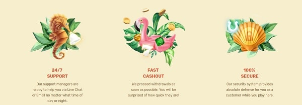 Paradise Online Casino Support, Cashouts, Security