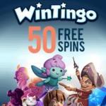 Wintingo Casino – 50 free spins & €500 bonus – Netent & Microgaming