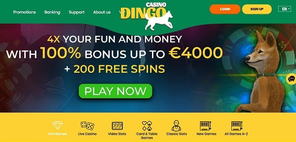 Dingo Welcome Bonus (4,000 EUR and 200 Free Spins)