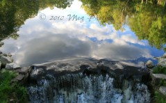 IMG_3649 The Sky is Falling WM