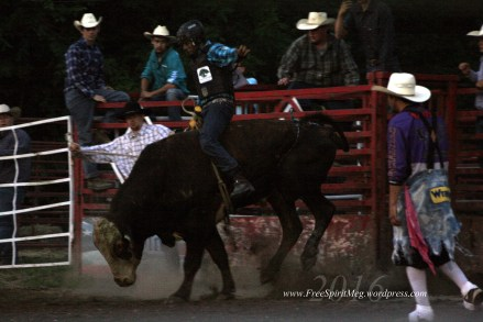 2016 DMRodeo1478