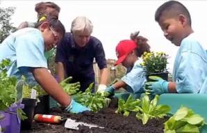 Kids garden USDA photo