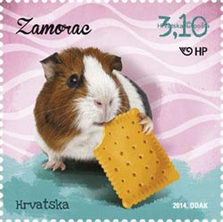 Guinea Pig 2014 Croatia stamp