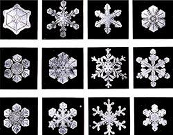 Snowcristals