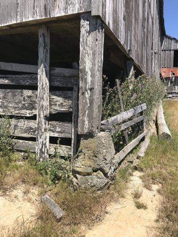 The corner post of this barn shows 4 feet of top soil loss from 150 years of sheep grazing.