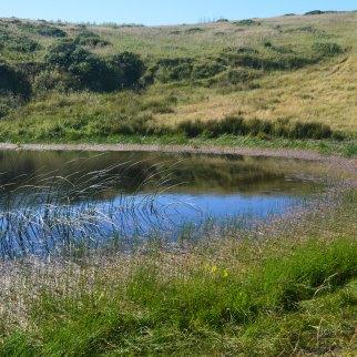Hill pond