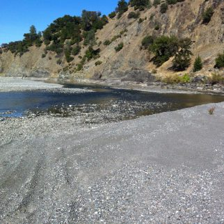 Eel river in summer
