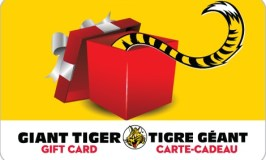 Win a $100.00 Giant Tiger Gift Card!