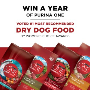 Win a Year Supply of Purina ONE Dog Food!