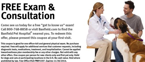 image relating to Banfield Coupons Printable titled Banfield Puppy Clinic in just PetSmart Free of charge Dog Test and