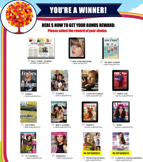 RewardsGold.com Free Magazine Subscriptions: Wall Street Journal, Men's Journal, Family Fun, etc. - US