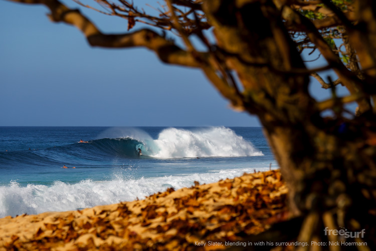 Kelly-Slater,-blending-in-with-his-surroundings.-Photo--Nick-Hoermann-