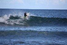 af1175dd92 39th Annual North Shore Menehune Surfing Championships - Freesurf ...