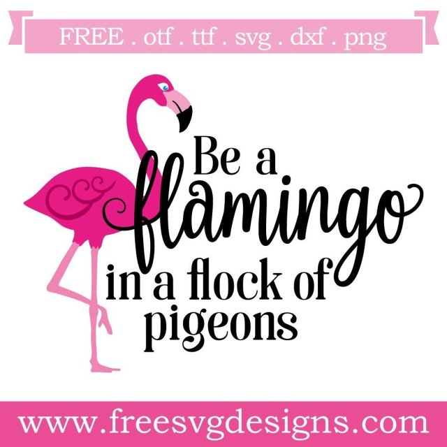 Free Flamingo quote cut files at www.freesvgdesigns.com. Our FREE downloads includes OTF, TTF, SVG, PNG and DXF files for personal cutting projects. Free vector / printable / free svg images for cricut