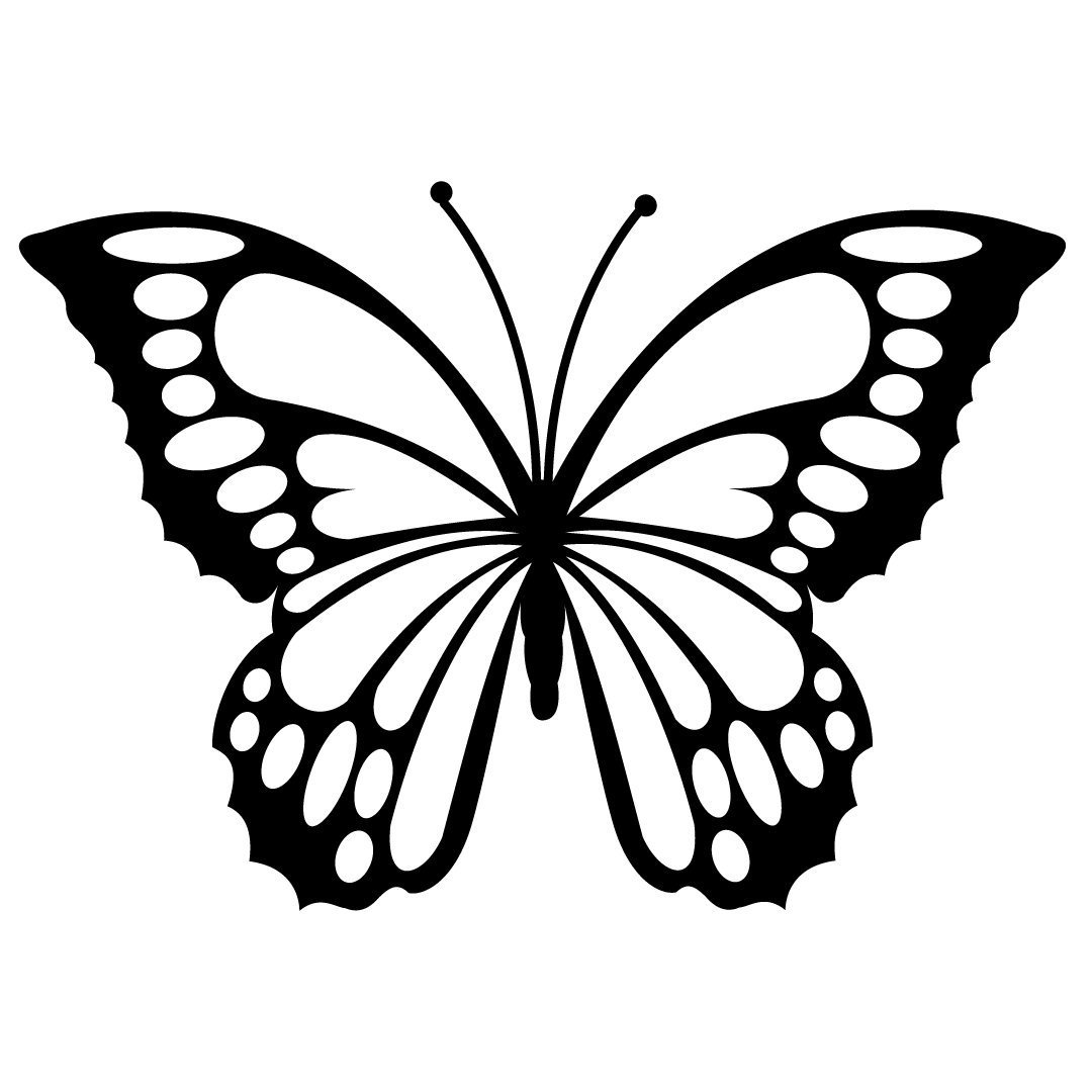 Download Free SVG Files | SVG, PNG, DXF, EPS | Butterfly SVG