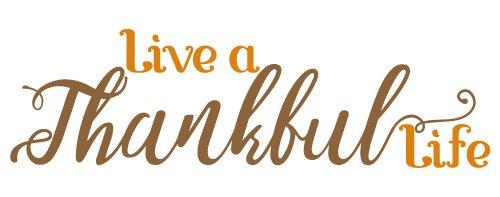 Live A Thankful Life SVG