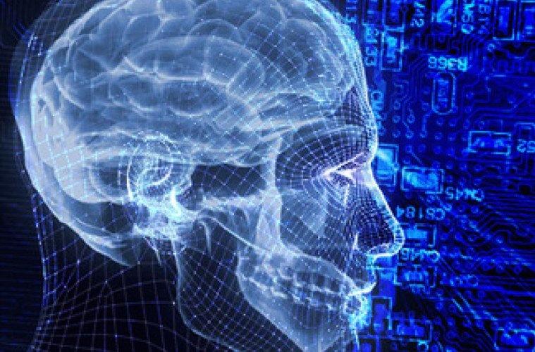 The Human Consciousness