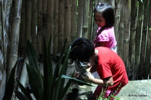 Tuburan: Transforming the Educational Landscape (Part 2 of 2)