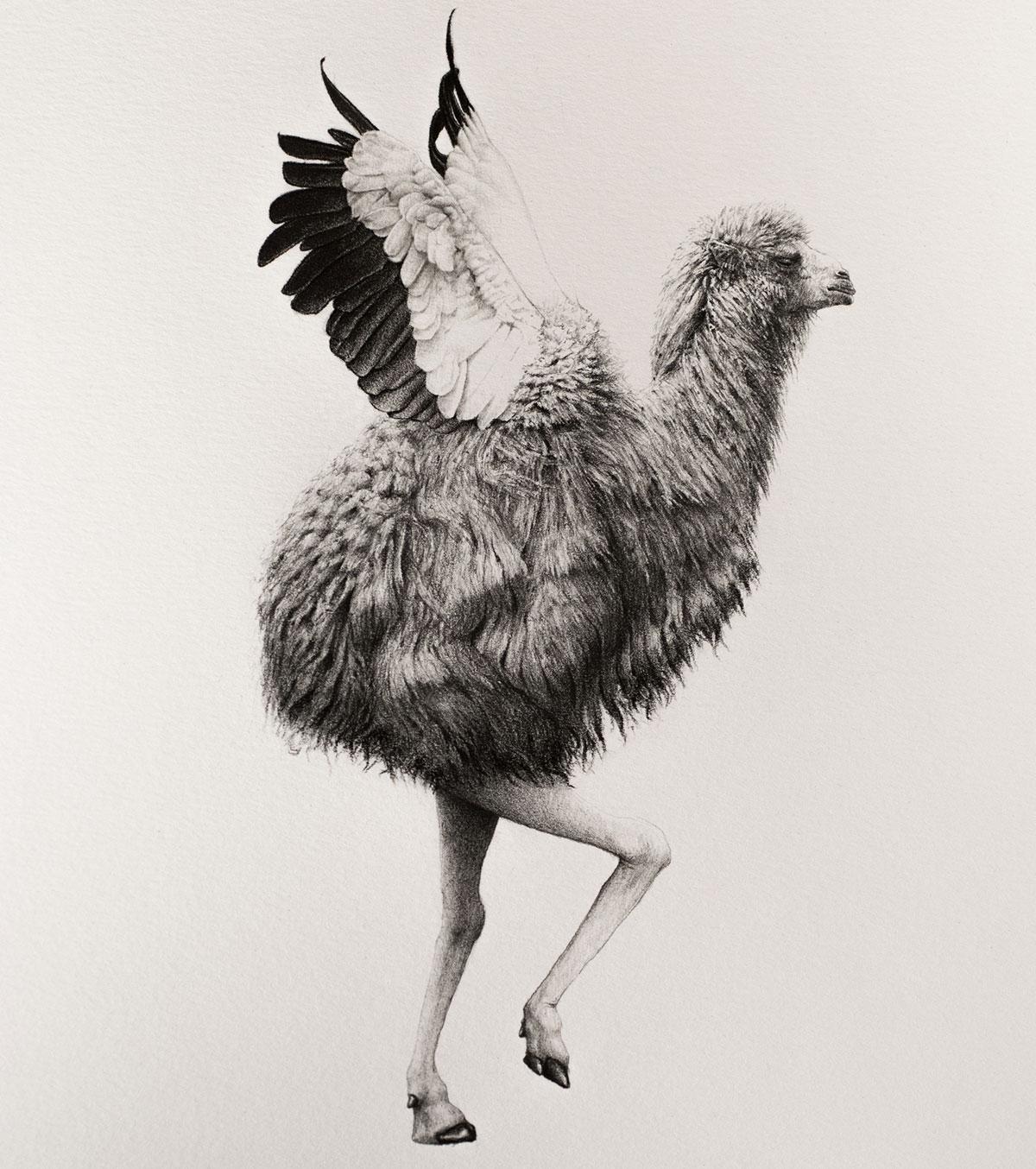 Camel Ostrich.