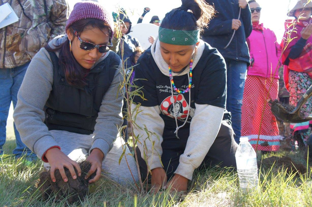 Women plant willow tree seedlings in the path of Dakota Access construction on September 25. Courtesy Indigenous Environmental Network (IEN).