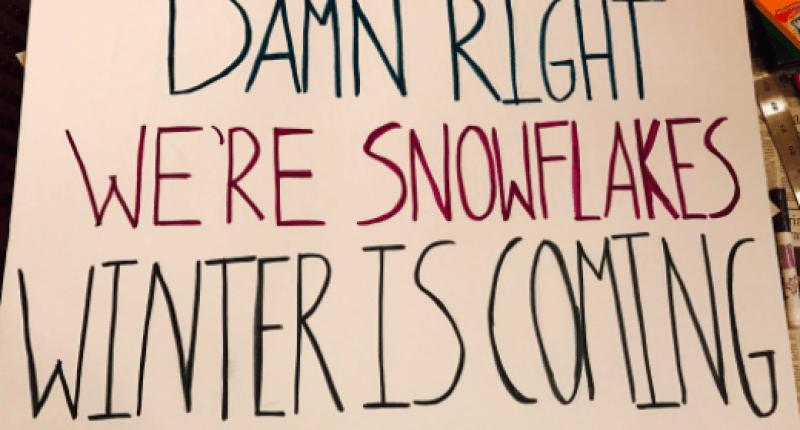 Sign from Saturday's Women's March on Washington (Twitter.com).
