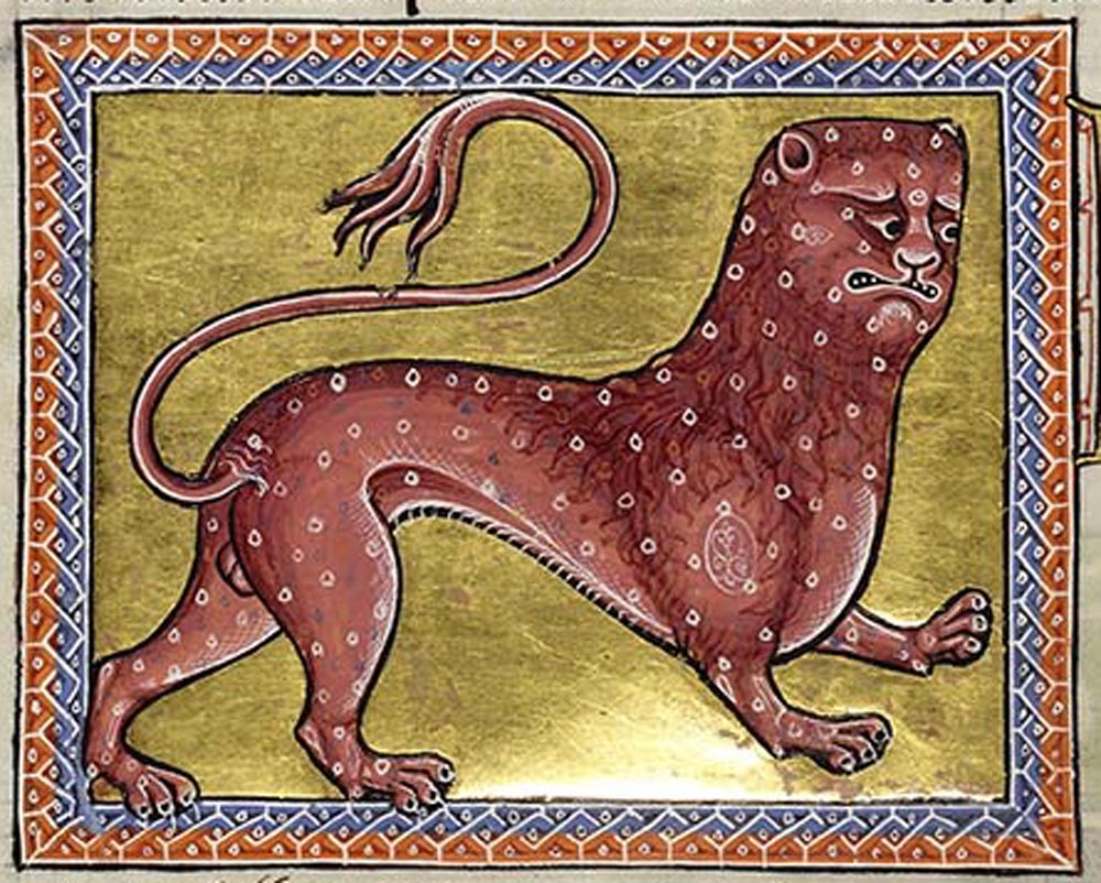 The leopard is a spotted wild animal which is very swift. It is produced by the adultery between a lioness and a pard.
