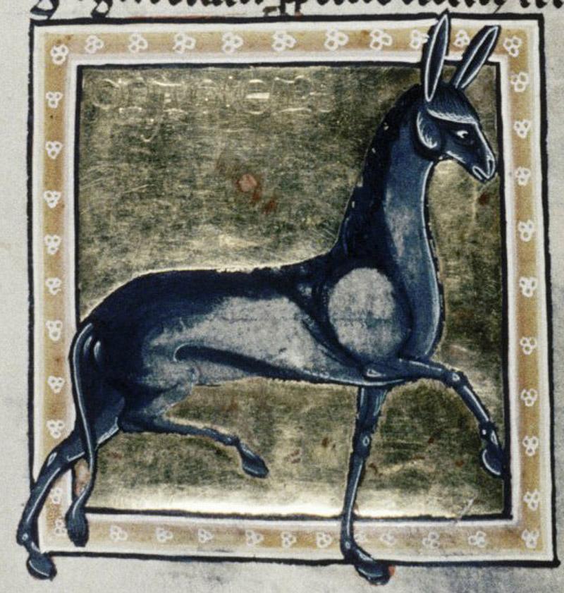 Bodleian Library, MS. Ashmole 1511, Folio 32r.