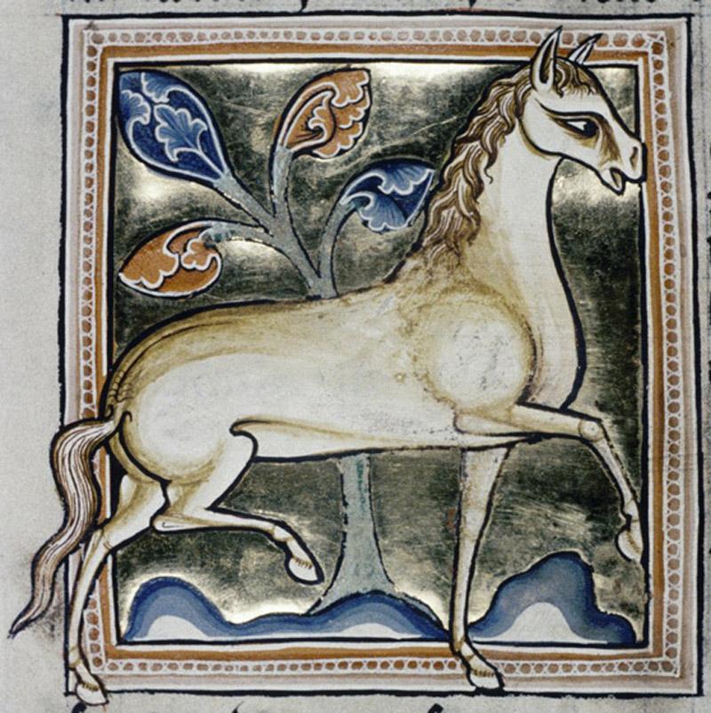 Bodleian Library, MS. Ashmole 1511, Folio 32v.