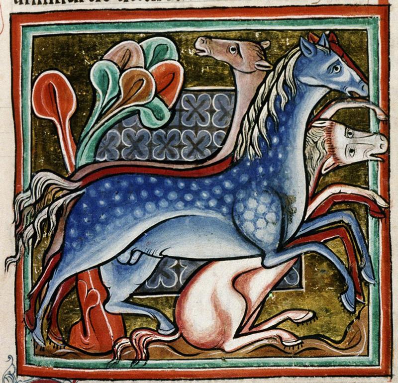 Bodleian Library, MS. Bodley 764, Folio 46r.