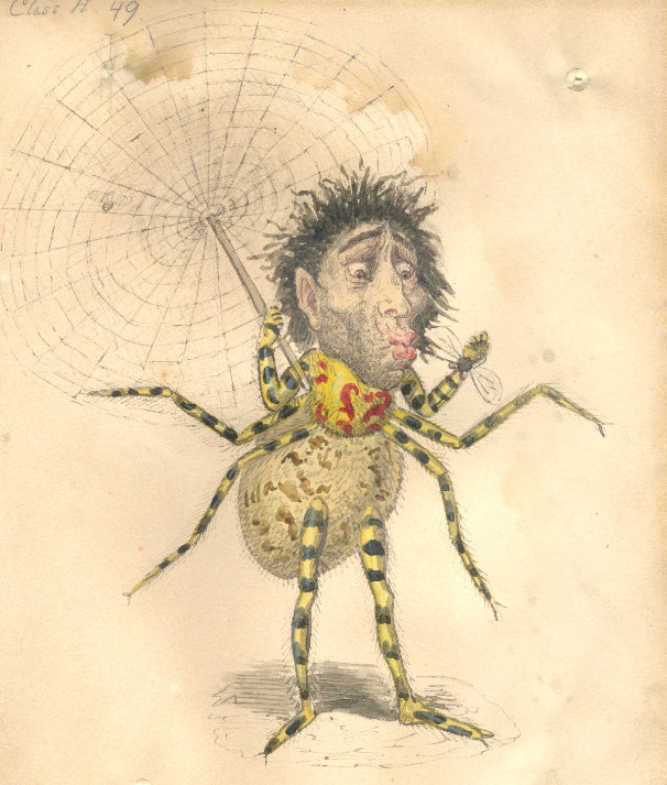 "Spider costume designed by Charles Briton for the ""Missing Links"" theme, Mistick Krewe of Comus, 1873: Carnival Collection, Louisiana Research Collection, Tulane University — <a href=""https://digitallibrary.tulane.edu/islandora/object/tulane%3A4878"" target=""_blank"" rel=""noopener"">Source</a> (some potential restrictions on reuse)."