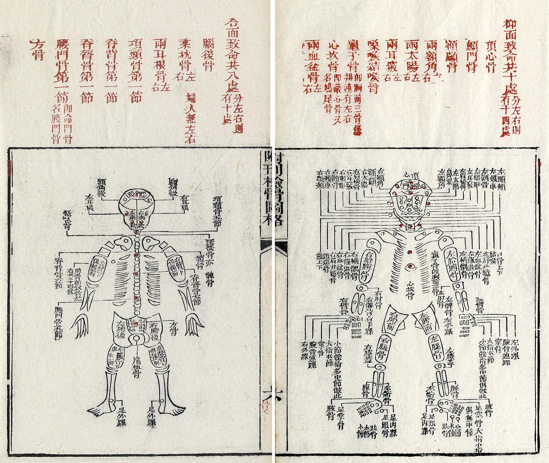 Nomenclature of human bones in Sòng Cí: Xǐ-yuān lù jí-zhèng, edited by Ruǎn Qíxīn (1843).