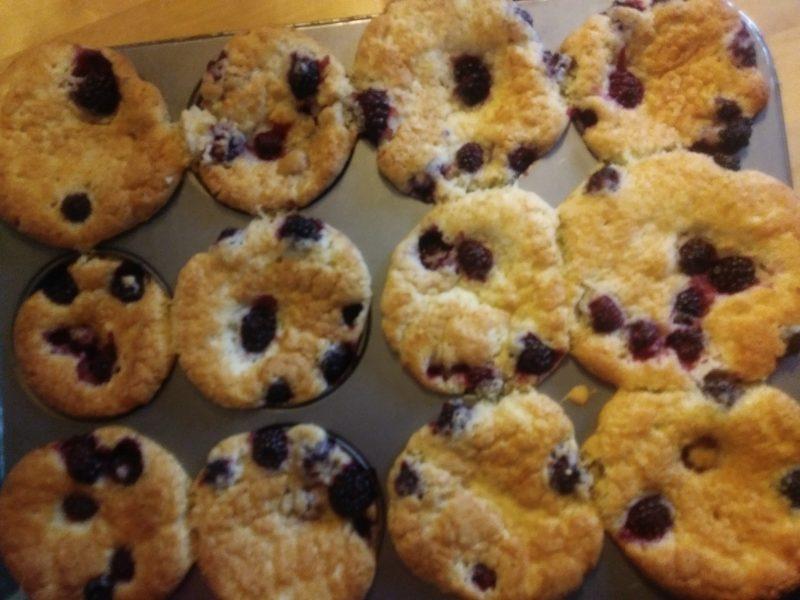 Baked blackberry muffins.