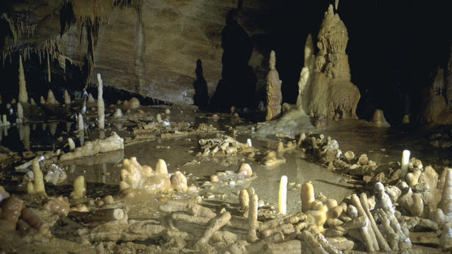 Archaeologists say the circular structures discovered deep in a cave in southwestern France were constructed by Neanderthals 176,000 years ago. (Etienne Fabre / SSAC)